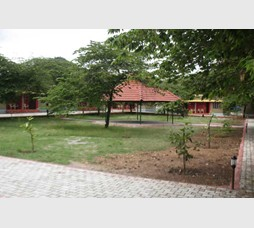 Jungle inn resort nagarhole karnataka for Resorts in bandipur with swimming pool