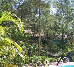 Hotels in Coorg (Kutta), Karnataka - Book Hotels Online and