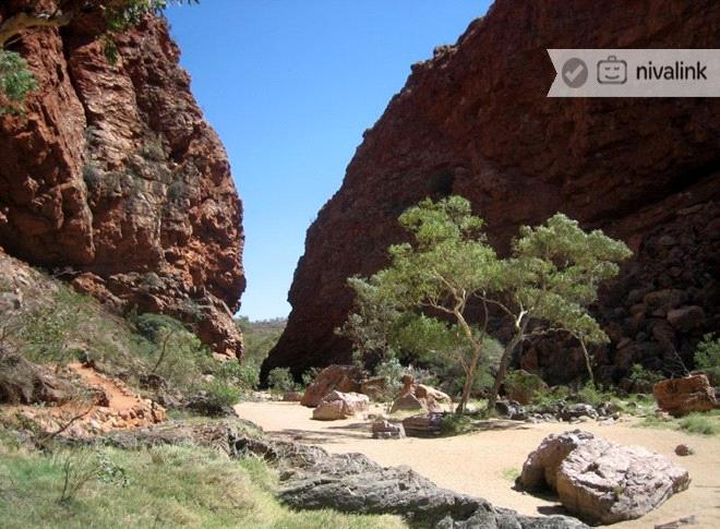 Places To Visit In Alice Springs Australia Things To Do Sightseeing Activity