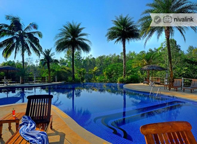 Evolve back chikkana halli estate coorg siddhapur near madikeri karnataka Hotels in coorg with swimming pool