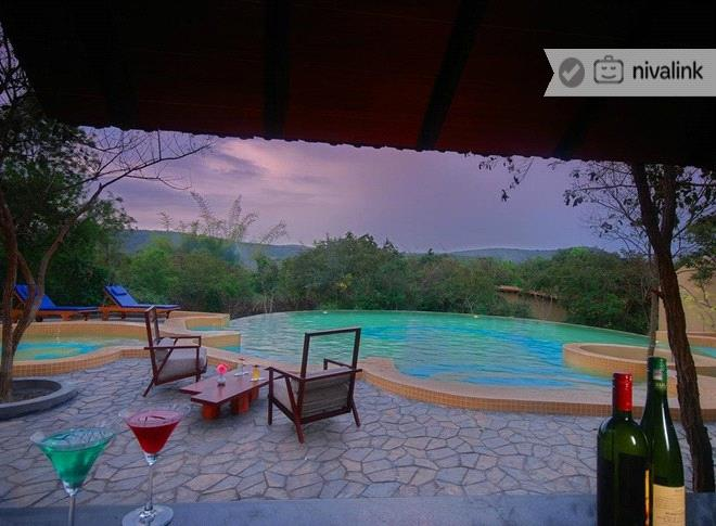 Windflower resort spa bandipur national park karnataka for Resorts in bandipur with swimming pool