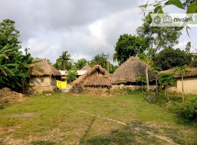 Places To Visit In Sunderbans Things To Do Sightseeing Activity Excursions In Sunderbans
